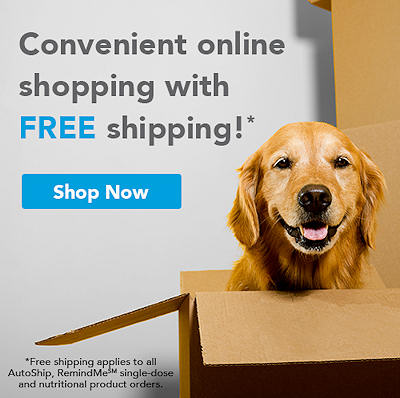 Shop Online for Your Pet Supplies